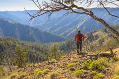 Blue Mountains (Matthew Singer) Tags: mountains washington unitedstates hiking bluemountains dayton scenicviews wenahatucannonwilderness umatillanationalforest