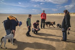 An Easter Walk with Friends (Nikki & Tom) Tags: boy dan beach dogs andy wales tom child diesel luke jazz harris nicky pembrey
