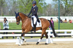 2015 Rolex Friday Dressage Test