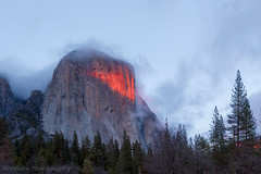 El Cap on Fire (Jared Ropelato) Tags: california park winter sunset storm tree nature nationalpark el cap yosemite elcapitan 2015 ropelato jaredropelato