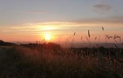 Sunset Monts d'Arrée (Marie Jestin) Tags: sunset sky nature landscape natura britanny finistere montsdarrée blinkagain infinitexposure