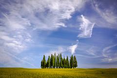Cypress island (Q-lieb-in) Tags: travel italy tuscany minimalism toscana     qliebin
