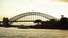 Ferry Sirius (Blue Mtns. bush girl) Tags: ferry harbour sydney australia sirius