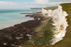 Seven Sisters walk   July 2016-20 (Paul Dykes) Tags: southdowns southdownsway southcoast coast cliffs sea shore coastal englishchannel sussex england uk seaside sun sunnyday chalk downs hills countryside