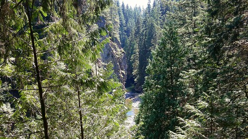 Capilano River and Canyon from above