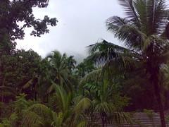 27072008377 (Gokul Chakrapani) Tags: waterfalls karnataka westernghats bolle charmadi