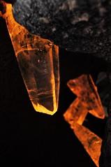 Gem Rock20140401_667 (gsas777) Tags: amber gem stones dinosaur skeleton old jurassic park fossil purple amethyst fish
