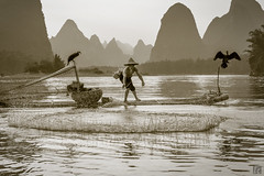 Net Touchdown (lycheng99) Tags: china travel trees fish motion mountains net nature water monochrome birds silhouette sepia cormorants circle landscape liriver fishing fisherman action guilin ring cast cormorant splash touchdown karst throw guangxi fishingnet xingping castnet chinatravel líjiāng karstformation
