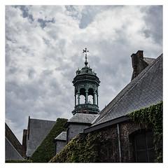 Jardin du Maeur (Gretsch*) Tags: leicam240 leicasummicron35mmf20asph mons belgique belgium
