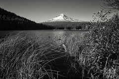 Trillium Lake (Joshua Johnston Photography) Tags: mthood trilliumlake oregon pacificnorthwest pnw joshuajohnston canon6d blackandwhite bnw
