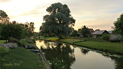 At sunset - De Grift - Veenendaal (Cajaflez) Tags: sunset zonsondergang riviertje river trees bomen water house huis nederland the netherlands veenendaal degrift coth5