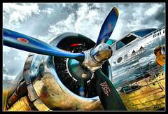 B-17 (J Michael Hamon) Tags: plane airplane aircraft bomber wwii b17 superfortress sentimentaljourney engine propeller aviation airport photoborder tonemapping hamon kodak easyshare