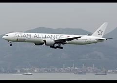 Boeing | 777-312/ER | Singapore Airlines | Star Alliance Scheme | 9V-SWJ | Hong Kong | HKG | VHHH (Christian Junker | Photography) Tags: nikon nikkor d800 d800e dslr 70200mm plane aircraft boeing b777312er b777300er b773er b777 b77w singaporeairlines singapore sq sia singapore866 sq866 sia866 9vswj staralliance widebody heavy triple7 staralliancescheme specialscheme speciallivery specialcolours arrival landing 25r airline airport aviation planespotting 34575 623 34575623 hongkonginternationalairport cheklapkok vhhh hkg clk hkia hongkong sar china asia lantau terminal2 t2 skydeck christianjunker flickrtravelaward flickraward zensational hongkongphotos worldtrekker superflickers