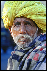 L'homme du Rajasthan - Man Rajasthan (diaph76) Tags: inde india rajasthan homme man moustache mustache turban portrait