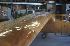 Slingsby Petrel (one of two in the world) (7XDriver) Tags: slingsby petrel glider sailplane