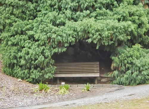 Bench Bower