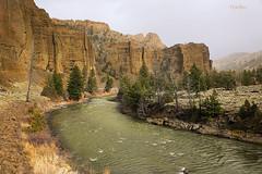 The Palisades (wyojones) Tags: trees river rocks wyoming np cody willows shoshone northfork palisades shoshonenationalforest shoshoneriver absarokamountains wyojones northforkoftheshoshoneriver absarokavolcanics northforkcanyon northforkoftheshoshone volcanictocks