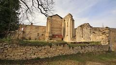 IMG_4177 (Roving_photographer) Tags: france abbey frankreich ruins ruine ruina monastery francia monasterio kloster monastero rovine abbaye abbazia 13thcentury monestir midipyrenees abtei klosterruine léobard