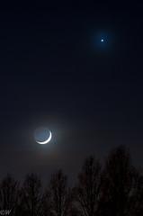 Moon and Venus (Kees W) Tags: trees moon night star long exposure venus minolta sony beercan planet f4 moonset slt 70210 a57 laea4