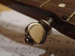 The fifth peg (rgrant_97) Tags: macro banjo olympus