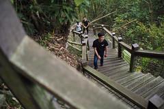 Chiayi () Tags: voigtlander olympus chiayi nokton  f095 em1  175mm