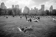 Central Park (Chen Yiming) Tags: city nyc newyorkcity urban bw newyork skyscraper blackwhite centralpark manhattan