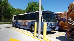 2001 Nova RTS #503 (abear320) Tags: bus nova florida gainesville system transit rts regional
