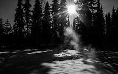 Chena Lake_Alaska_Aurora_2015_#0035 (Hero32) Tags: camera bw flickr fuji backpacker fairbanks 2015 23mm fujix100s x100s