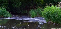 (Schmidti76) Tags: nikon nikond3300 d3300 outdoor langzeitbelichtung ndfilter landscape water wasser nd1000