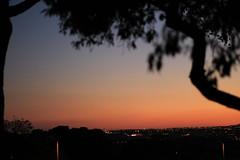 Atardecer de verano (carmenmt) Tags: dehesa de la villa madrid atardecer ocaso sol