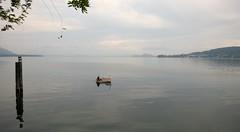 Lago Maggiore (maramillo) Tags: maramillo lake boat one peaceful water scape italy piemonte agcgwinner pregame sweep challengeyouwinner cyunanimous unanimous cy