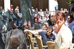 Abrivado_Voto_2016-27 (amcadweb) Tags: fontvieille camargue taureau fte