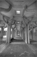 labirinto arabo (bruto68) Tags: bruto68 nikon nikond300s nikon18200 roma rome romansky citta cielo city hdr hrd hitspeed moschea bw