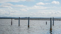 Waterscape at Long Jetty (Merrillie) Tags: natural nikon nature australia birds d5500 nswcentralcoast newsouthwales nsw cormorants centralcoastnsw water wharf photography landscape outdoors waterscape jetty centralcoast longjetty outdoor tuggerahlake lake