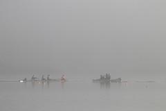 Rowers and Coach (blachswan) Tags: lakewendouree ballarat victoria australia fog winter rowers rowingcourse rowingboat coach boat water buoys sunrise