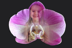 Little Alyssa in the Orchid (ClaraDon) Tags: grandkids photoshop alyssa orchid blended