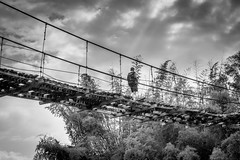 Dont step left! (PixPep) Tags: thailand blackandwhite blackwhite pixpep monochrome boy bridge