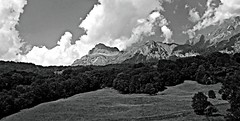 En route to Chamonix (AmyEAnderson) Tags: bw france europe alps mountains mountainside landscape clouds trees pasture rhonealpes scenic