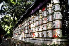 Barrels of Sake at the Meiji Shrine (latentshutterbug) Tags: instagramapp square squareformat uploaded:by=instagram ludwig travel photography japan tokyo shibuya meijishrine meijishrinecomplex sake nihonshu offerings shinto shintoism