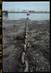 Dock vista (fitzhughfella) Tags: fujigsw690iii 6x9neg analogue southamptonwater