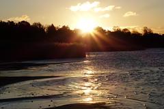 Hstmorgon (evisdotter) Tags: hstmorgon autumn morning sunrise sun sunny reflections reed beach strand sooc nature nabben mariehamn land