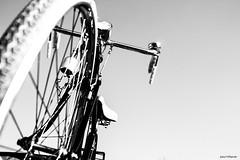 Bianchi (Fabio75Photo) Tags: bicicletta manubrio bianchi bianco nero black white routa raggi prospettiva