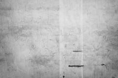 (koeb) Tags: bw wall wand sw cracks mainz risse mayence