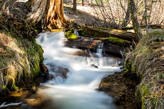 Manzanita_creek (Photo-Jonny) Tags: california park lake america creek national redding lassen manzanita