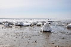 cape cod iceberg (marie palcic) Tags: ocean winter snow ice capecod iceberg wellfleet