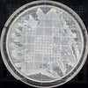 BLUE6643 (David J. Thomas) Tags: arkansas bacteria microbiology batesville terraforming lyoncollege bacillussubtilis ecopoeisis planetaryengineering techshot davidjthomas marssimulator