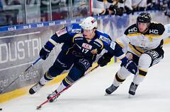 Mathias Mølgaard (Daniel Stentz) Tags: hockey herning icehockey bluefox herlev diu ishockey eagels isdk