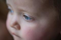 BabyGirl (Emma Gards) Tags: portrait baby girl eyes nikon oeil yeux bleu d750 enfant fille bb visage chid pourpre