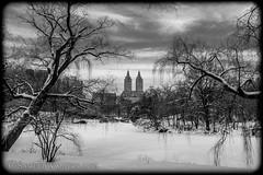 San Remo (SamuelWalters74) Tags: newyorkcity winter snow newyork unitedstates centralpark manhattan sanremo thelake winterinthepark