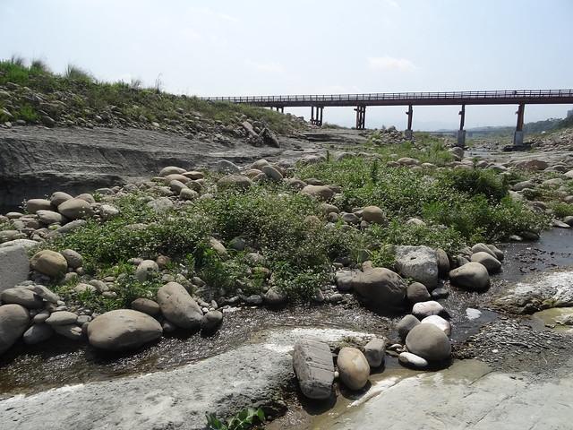 頭前溪化石01